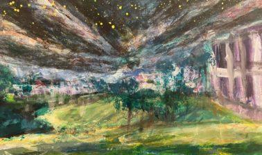 鴨池と夜空